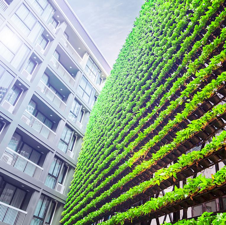 Agriculture urbaine et végétalisation