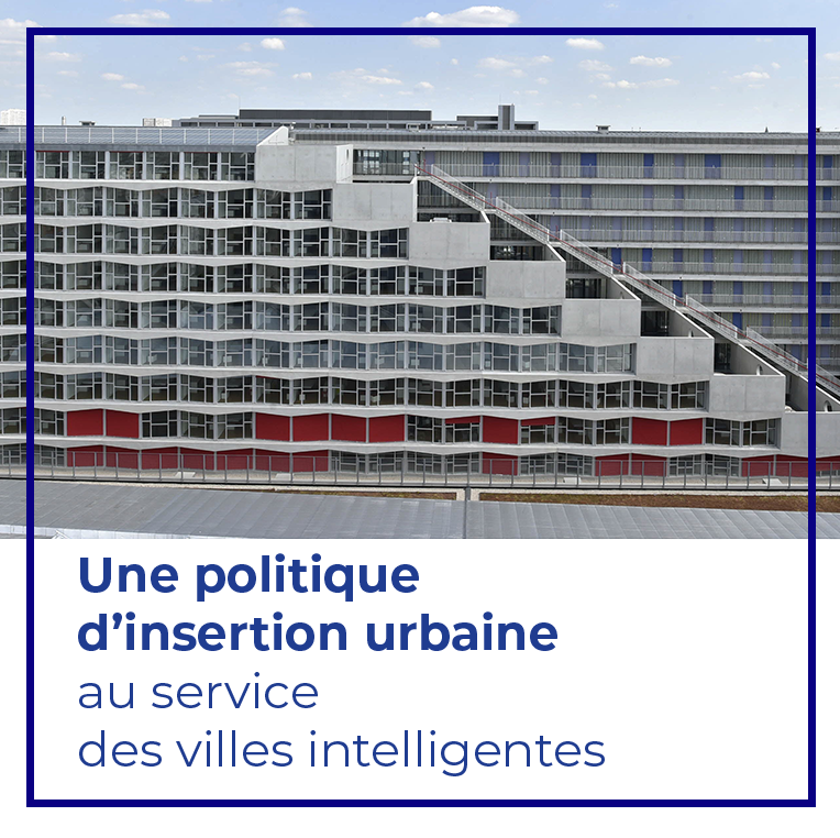 Format-vignette-politique-insertion-urbaine